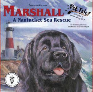 marshall_thedog