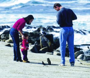 photo credit: Monterey County Convention & Visitors Bureau