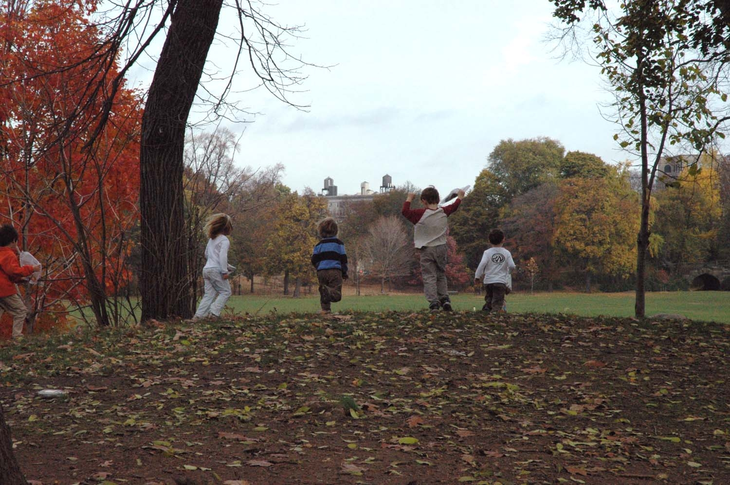 Fun Fall Family Activities in Prospect Park, Brooklyn, NY