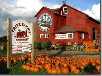 Fun Fall Family Activity: Apples, Pumpkins, and Corn Maze at Critz Farms in Cazenovia, NY