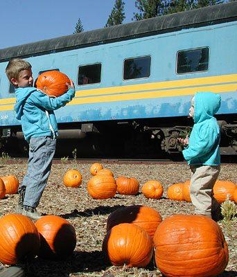 Fall Family Outdoor Activities in Northern California's Shasta Cascade