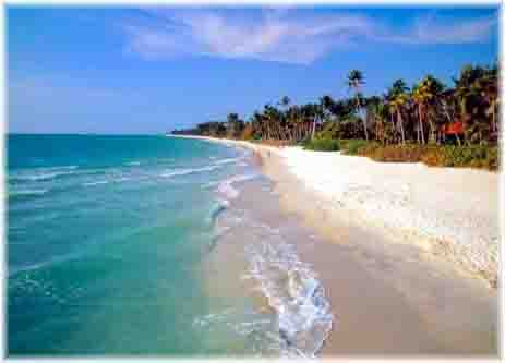 Florida Family Beach Vacations; The Paradise Coast