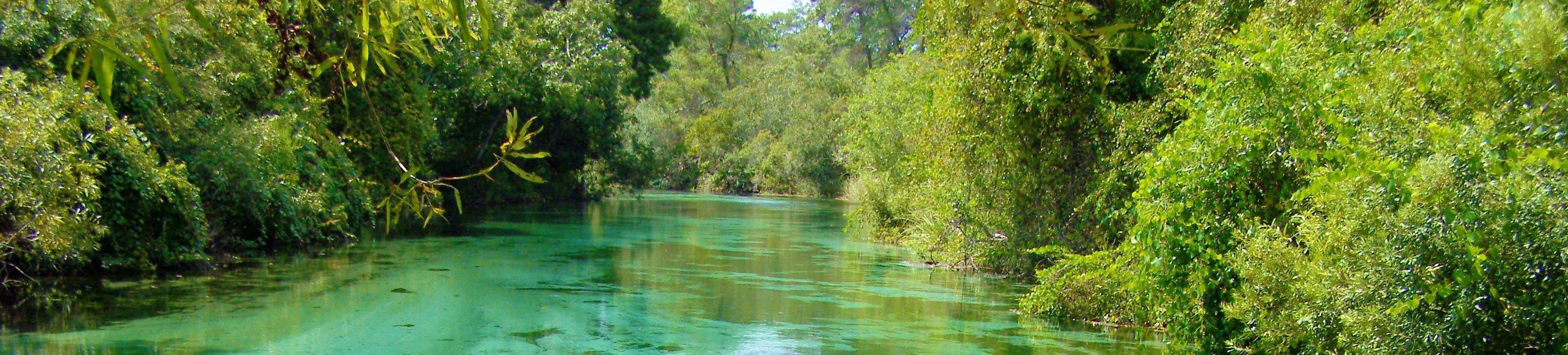Florida Family Beach Vacations The Nature Coast
