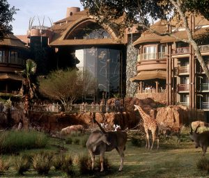 Animals at Disney Animal Kingdom Lodge