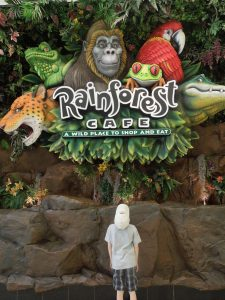 rainforest cafe mall of america