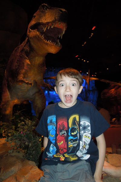 Photo Friday – Dinosaur Chicken