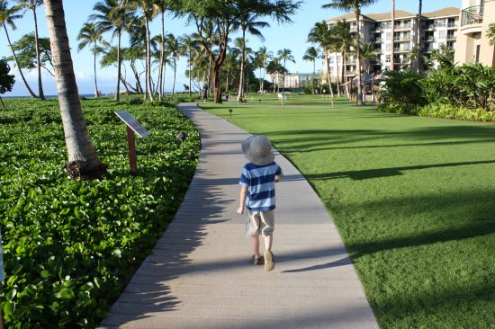 Maui - Kaanapali boardwalk - photo copyright: Stephany Wiestling - all rights reserved.