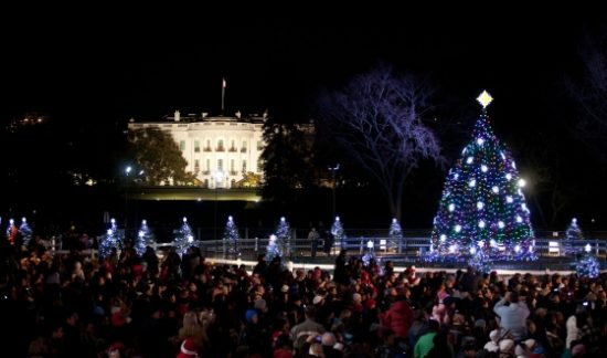 The National Christmas Tree is illuminated during the lighting ceremony on the Ellipse in Washington D.C., Dec. 1, 2011. The White House is visible in the background. (Official White House Photo by Lawrence Jackson)